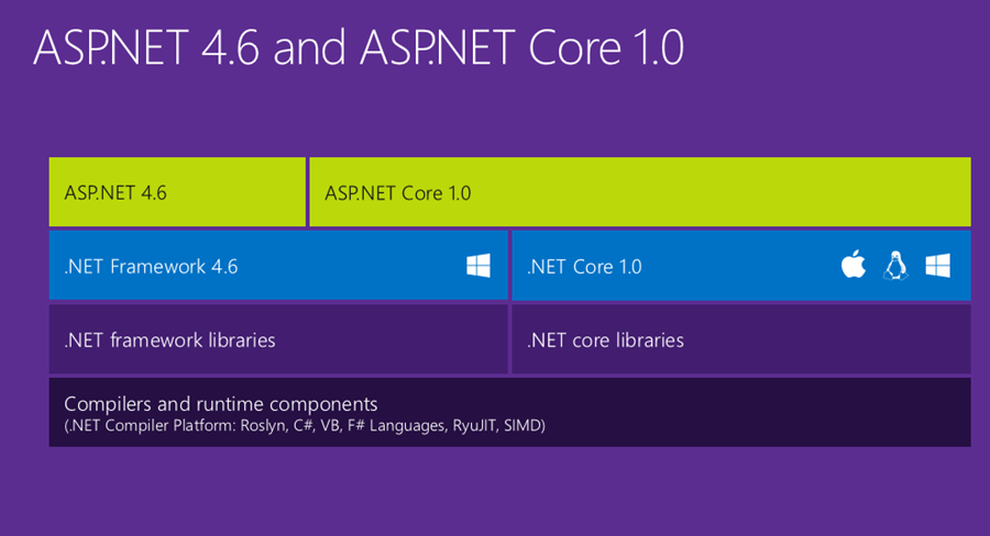 aspnet 46 and aspnet 10